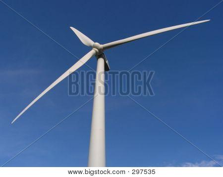 Te Apiti - Wind Farm, New Zealand