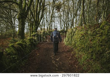 Senior Man In His Back Crossing The Forest In The Camino De Santiago Way, In Spain.