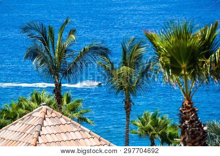 TENERIFE ISLAND, SPAIN - JULY 11: Palm trees and motorboat in the background on July 11, 2016 in Tenerife, Spain.