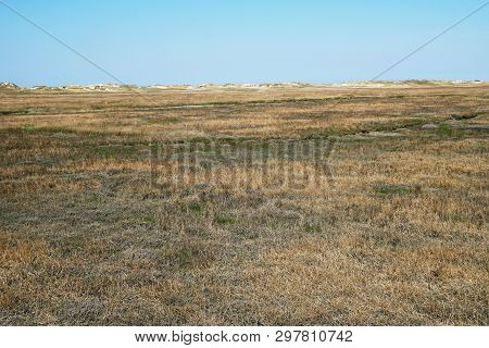 Salt Marsh And Sand Dunes At German North Sea Coast In Sankt Peter-ording - Nature Background With C