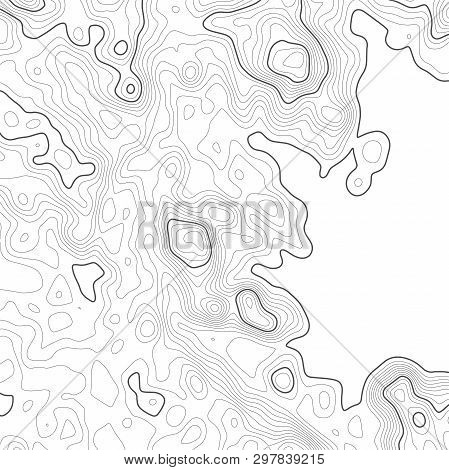 Topographic Map Background. Grid Map. Vector Illustration .