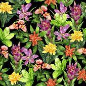 Hand drawn seamless pattern with tropical plants Tillandsia cyanea, Anthurium, Aechmea, Calathea saffron, Bromeliaceae and Aglaonema on black background. Watercolor botanical illustration poster
