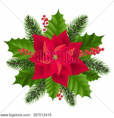Red Poinsettia Isolated With Fir Tree White Background With Gradient Mesh, Vector Illustration