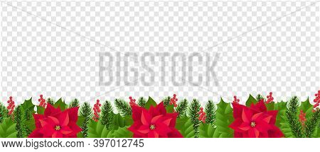 Red Poinsettia Border Isolated Transparent Background With Gradient Mesh, Vector Illustration