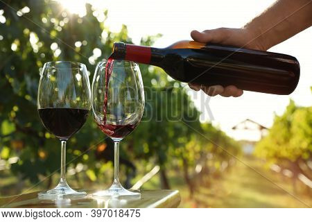 Man Pouring Wine From Bottle Into Glasses At Vineyard, Closeup