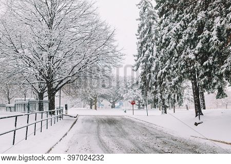 Heavy Snowfall And Snowstorm In Toronto, Ontario, Canada. Snow Blizzard And Bad Weather Winter Condi
