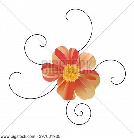 Single Gerbera Flower With Black Curls. Red, Beige, Yellow, Green Shades Of Color. Hand-drawn Vector