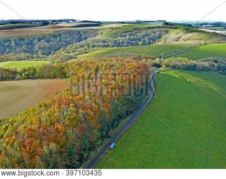 Aerial View Of The Trees At Monks Down In Wiltshire