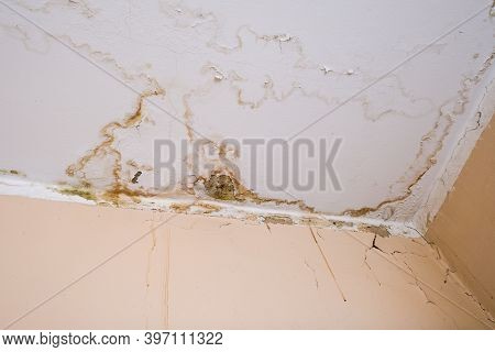 Rain Water Leaks On The Ceiling Because Of Damaged Roof Causing Decay, Peeling Paint And Moldy.