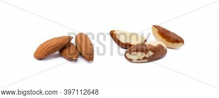 Group Para Nuts And Almond Isolated On White Background