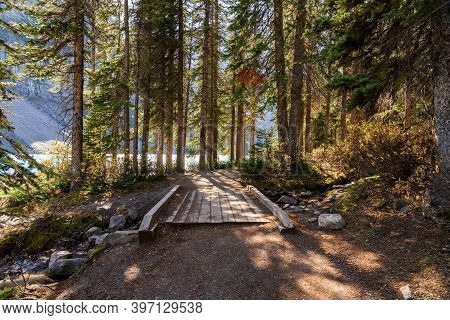 Walking Trail On The Lakeshore In The Forest On A Sunny Day. Moraine Lake Lakeside, Banff National P