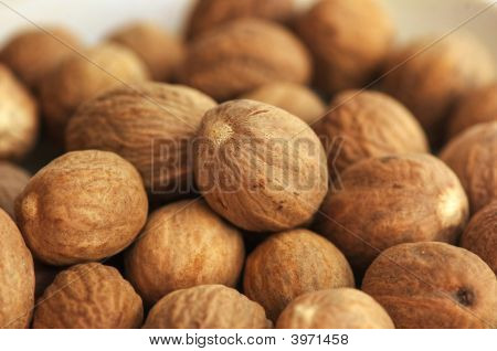 Nuts Theme