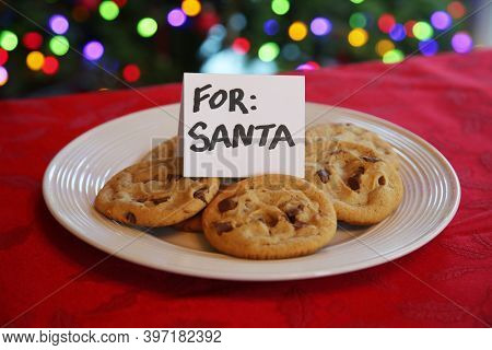 Cookies for Santa Claus. Fresh Baked Cookies on a white plate with a Christmas Tree in back. Santa loves a plate of cookies. Merry Christmas.