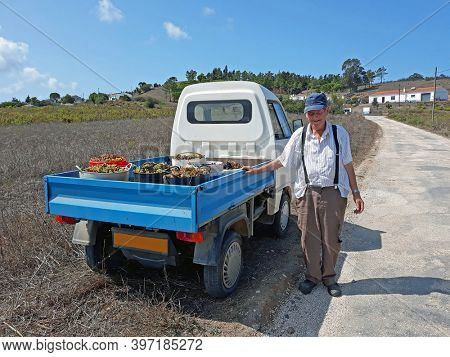 Aljezur, Portugal - September 19, 2020: Old farmer with his harvested grapes at his car in Portugal