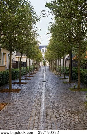 The Alley In Soaking Wet On A Rainy Day In Serris, France. The Trees Form A Beautiful Alley To An Ar