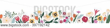 Horizontal White Banner Or Floral Backdrop Decorated With Gorgeous Multicolored Blooming Flowers And