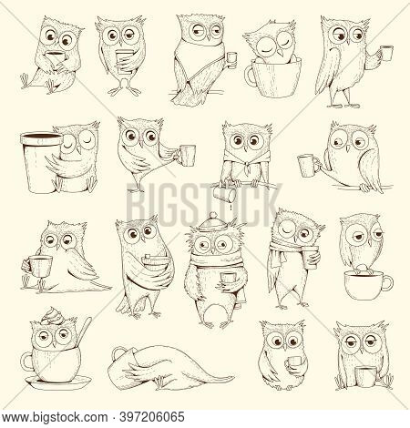 Owls With Cup. Sleep Concept Birds Characters Sitting On Coffee Cups Vector Illustrations. Bird Owl