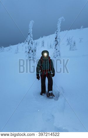 A trekker with a headlamp walking in a snowy Riisitunturi National Park, Finland