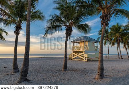 Palm Trees On Miami Beach At Sunrise And Life Guard Tower, Miami, Florida.