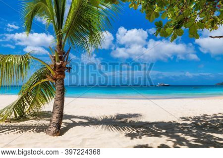 Sunny White Sand Beach With Coconut Palm And Turquoise Sea. Summer Vacation And Tropical Beach Conce