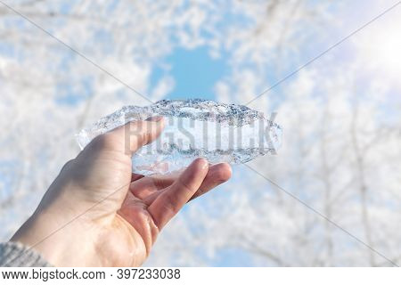 Piece Of Ice In A Man's Hand Against The Background Of Winter Trees And The Bright Sun. Global Warmi