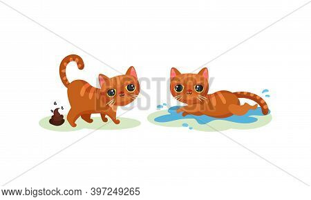 Naughty Playful Kitten Defecating And Lying In Puddle Vector Set