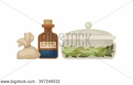 Glass Bottle With Mixture And Bay Leaves As Ancient Medicine Vector Set