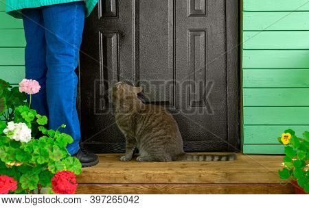 The Cat And The Woman Are Next To The Front Door In Outdoors.