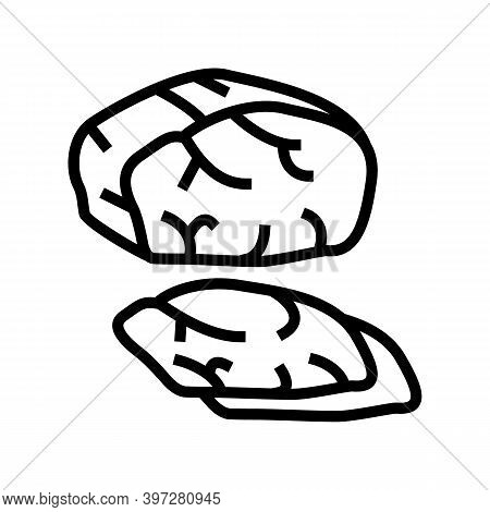 Dried Cooked Meat Line Icon Vector. Dried Cooked Meat Sign. Isolated Contour Symbol Black Illustrati