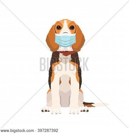 Vector Portrait Of Beagle Dog Wearing Face Mask Isolated On White Background