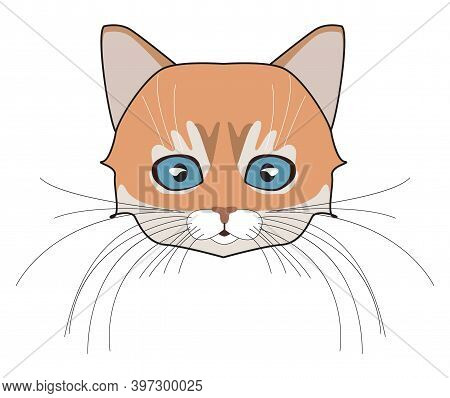 Cat Head. Face Kitten, Whisker And Ear, Muzzle And Wool. Vector Illustration