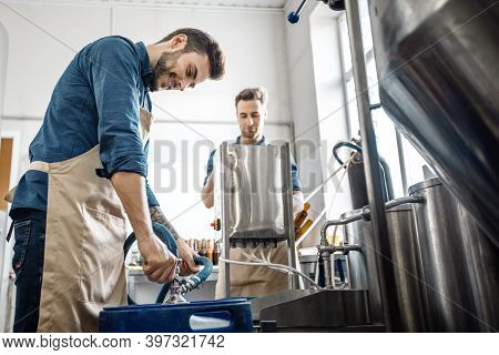 Small Family Business, Drink Productions And Modern Brewery. Busy Young Attractive Male Workers In A