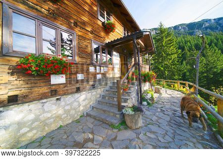 CURMATURA CHALET, BRASOV, 20 OCTOBER, 2020: Architecture of the old wooden Curmatura chalet in Piatra Craiului National Park, Romania, Europe