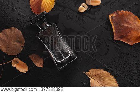 Black Perfume And Dry Leaves On Dark Background