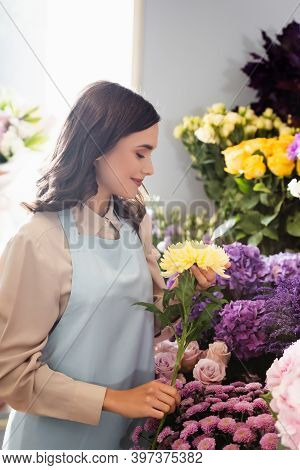 Side View Of Female Florist Caring About Yellow Aster Near Racks Of Flowers With Blurred Window On B