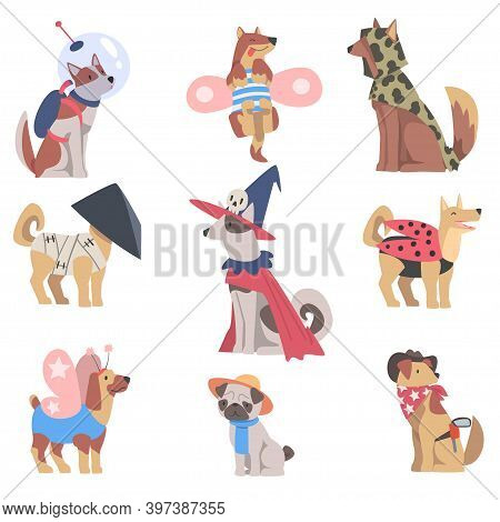 Cute Dogs Of Different Breeds In Festive Costumes Set, Funny Pets Animals Dressed For Masquerade, Ca