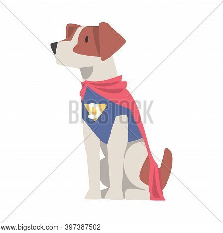 Cute Dog In Superhero Costume, Funny Pet Animal Character Dressed In Costume For Masquerade, Carniva