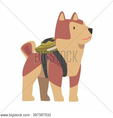 Cute Dog With Backpack, Funny Pet Animal Character Dressed In Festive Costume For Masquerade, Carniv