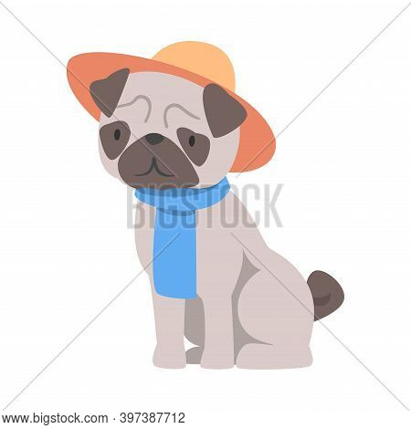 Cute Pug Dog Dressed In Scarf And Hat, Funny Pet Animal Character Cartoon Style Vector Illustration