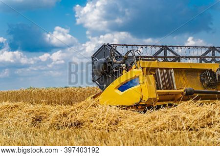 Summer Wheat Harvesting. Working Rye Harvester Combine Machines On Gold Wheat Fields. Rye Corn Harve