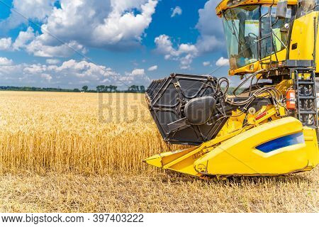 Process Of Gathering A Ripe Crop From The Fields. Combine Harvester In Action On Wheat Field. Closeu