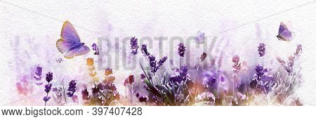 Watercolor Blossoming Lavender Flowers And Flying Butterfly In Summer Morning Background . Purple Gr