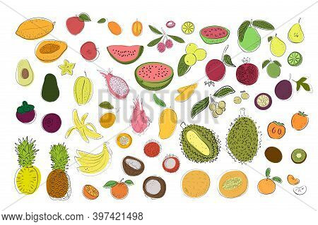 Set Of Tropical Fruits. Bright And Colorful Pear, Apple, Lemon, Lime, Watermelon, Orange, Durian, Pi