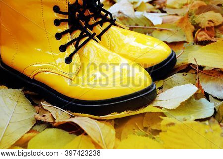 Bright Yellow Rubber Boots, Boots Stand On The Autumn Leaves. Boots With Massive Black Tractor Soles