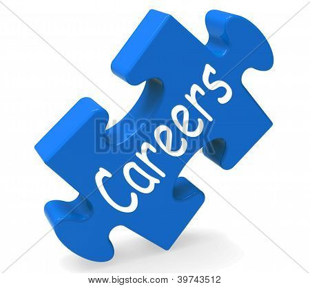 Career Means Job Prospects And Occupation Choice