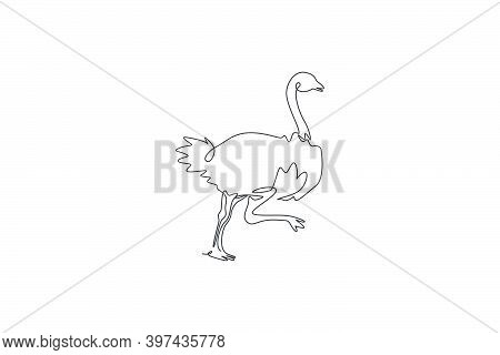 Single Continuous Line Drawing Of Cut Ostrich Bird Run Fast. Endangered Animal National Park Conserv
