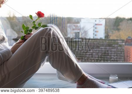 A Girl Sits In Quarantine On The Windowsill And Holds A Rose In Her Hand, In The Morning