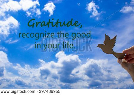 Man Hand Holding Wooden Bird On Cloud Sky Background. Words 'gratitude, Recognize The Good In Your L