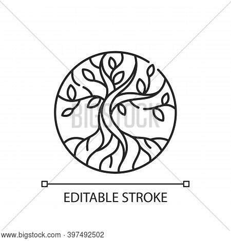 Life Tree Linear Icon. Metaphor For Torah. Earth And Heaven Connection. Hebrew Creation Myth. Thin L
