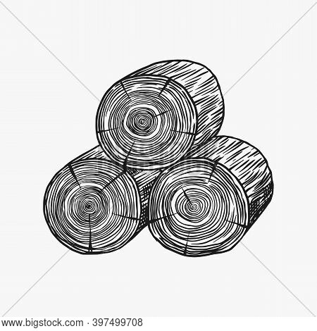 Wood Or Logs. Piece Of Tree. Plank Or Lumber And Cut, Firewood In Vintage Style. Vector Illusion For